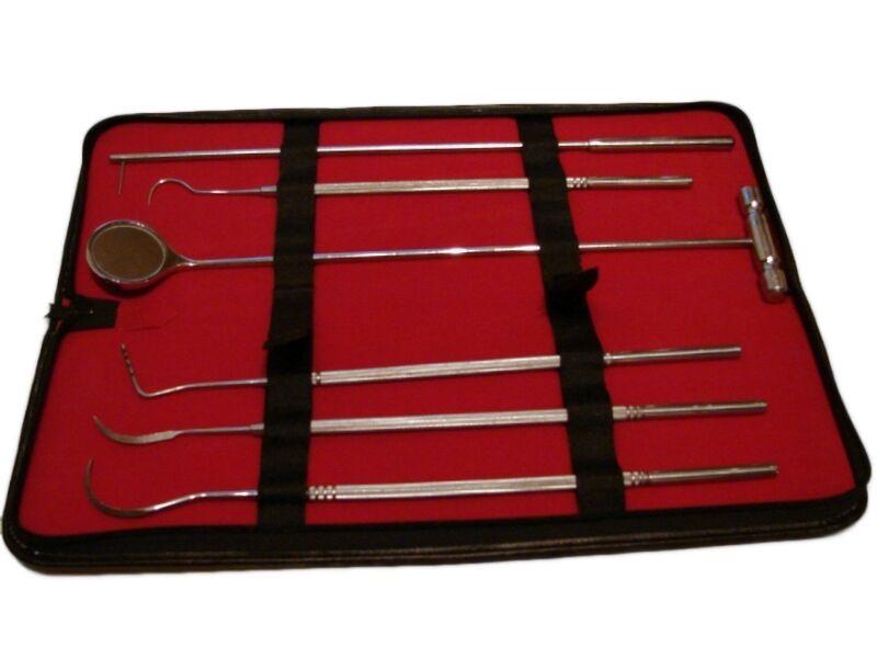 6 piezas Dental Elige sonda escaladores Veterinario Equino Instruments  Nuevo