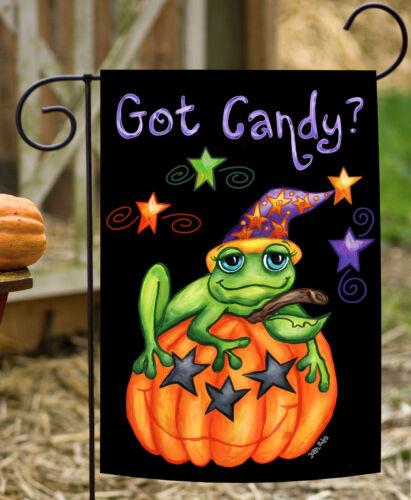 Toland Toad Candy 12.5 x 18 Colorful Halloween Got Candy Pumpkin Garden Flag