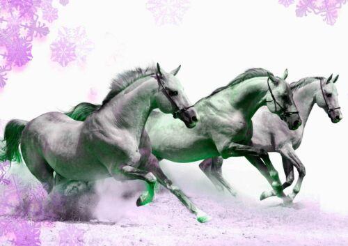 Horse #5 Black White Poster Beauty Wild Running Animal Picture Print Artwork