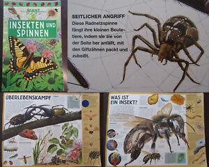 Giant Books Insekten und Spinnen 2004 Folioausgabe Natur Wissen Biologie js