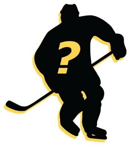 NHL MYSTERY PACKS! 2-3 Inserts Each SP/SPX, YGs, Auto, Rookie Materials +MORE!!!