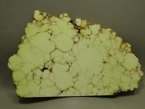 Citron-Chrysoprase-Polished-Stone-Slab-Yellow-Rock-8-inch-Australia-4