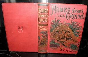 Homes-Under-the-Ground-A-Description-of-Animals-1887-Rev-J-G-Wood-HB