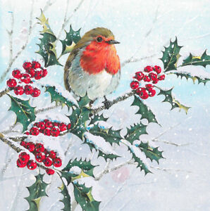 Christmas Card Design.Details About Pack Of 5 Robin Traditional Christmas Cards Ling Design Festive Card Packs