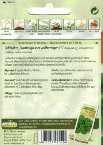 4182 Feldsalat /'Dunkelgrüner vollherziger 2/' winterfest Rapunzel Samen