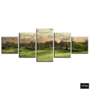 Field-Scenery-Green-Landscapes-BOX-FRAMED-CANVAS-ART-Picture-HDR-280gsm