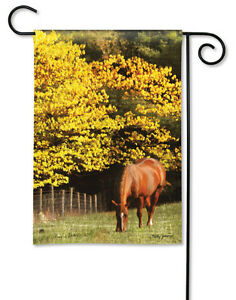 OUT-TO-PASTURE-Horse-Grazing-Fall-Country-Western-12-5-034-x-18-034-Small-Banner-Flag