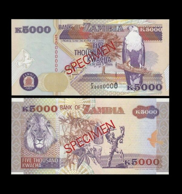 Zambia 5000 Kwacha 1992 P41s UNC - Specimen