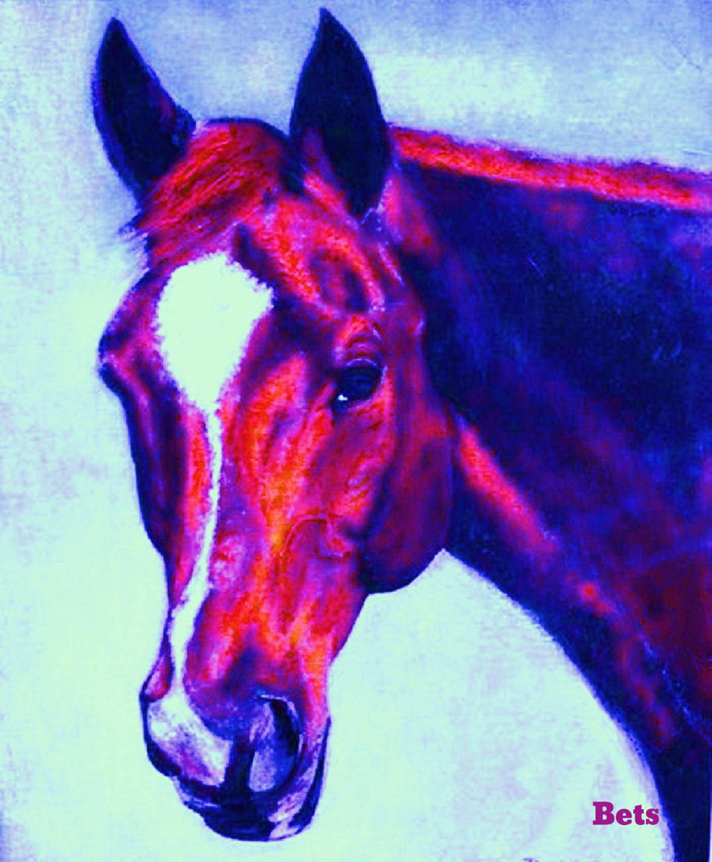 HORSE PRINT Giclee CHESTNUT Horse  MADURO artist BETS 5 COLORS print size 15 X 18  cheap and fashion