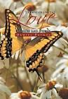 Transcendental Love: Stories and Poems by Daniel Pasqua (Hardback, 2012)