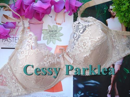 Lace Slight Padded Stretchy Cup Wired Bras White Black Pink Blue Beige 10-22 AU