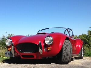 2014 Shelby Cobra (Replica)