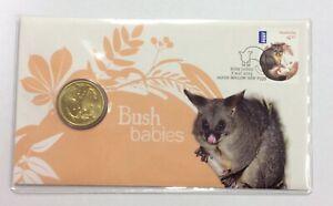 2013-1-PNC-Bush-babies-Possum