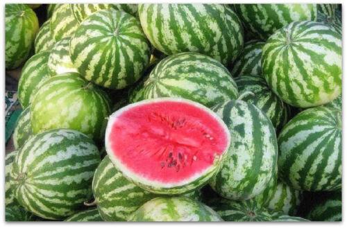 Watermelon Astrakhan mid season Ukraine Seeds 3g Астраханский Арбуз среднеспелый