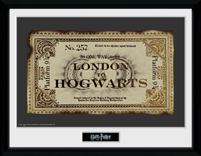Harry Potter Slytherin Wizarding World Framed Poster Print 40x30cm12x16 in