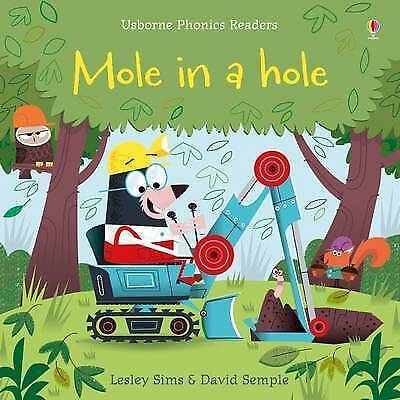 1 of 1 - Mole in a Hole by Lesley Sims (Paperback, 2016)-9781409580423-G048