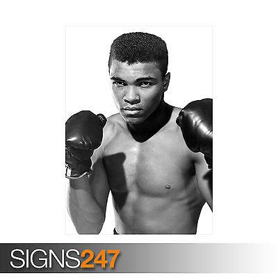 A0 A1 A2 A3 A4 Muhammad Ali Cassius Clay Boxing Vintage Poster Art Print