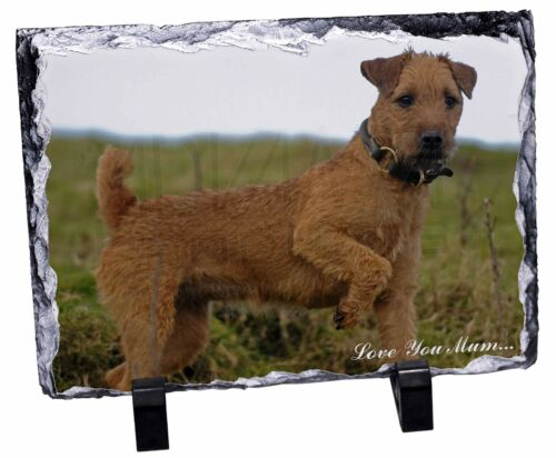 Lakeland Terrier 'Love You Mum' Photo Slate Christmas Gift Ornament, ADLT1lymSL