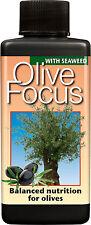 100ML-OLIO D'OLIVA Focus Plant Food-concentrato nutrienti per olive