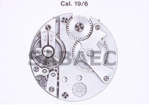 "Roskopf Wille Fréres WF 19/"" 6 19//6 Patent 30353 part 311 Coqueret NOS"