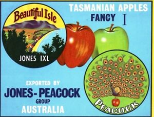 SALE-Vintage-Tasmania-Apple-Case-Labels-Fruit-Art-Poster-034-bakers-dozen-B-034-13