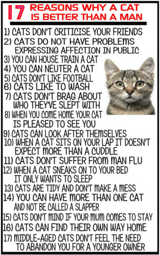 17 REASONS WHY A CAT IS BETTER THAN A MAN funny SIGN PLAQUE cats men wall art
