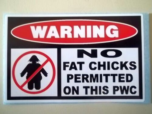 WATER CRAFT SKI JETSKI STICKER DECAL *55 PWC FUNNY NO FAT CHICKS WARNING