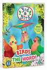 3rd And Bird - Bird's The Word! (DVD, 2009)