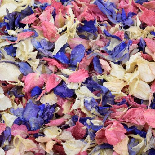 2.5 Litre Pack of Biodegradable Delphinium Petals in Various Colours XDPHL