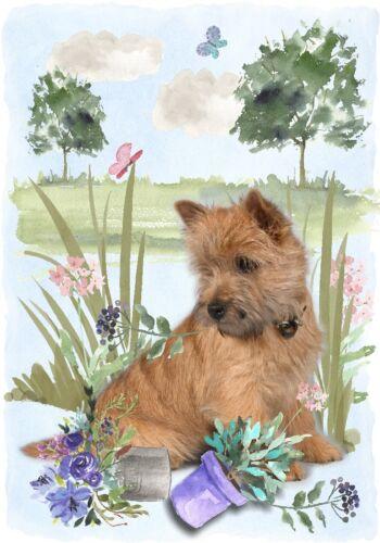 "4/"" x 6/"" Notelet Design By Starprint Blank Card Cairn Terrier Dog A6"
