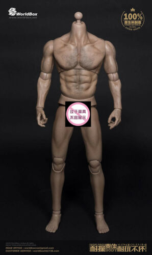"""1//6 Scale WorldBox AT012 Wolverine Wide Shoulder Muscular 12/"""" Figure Body New"""
