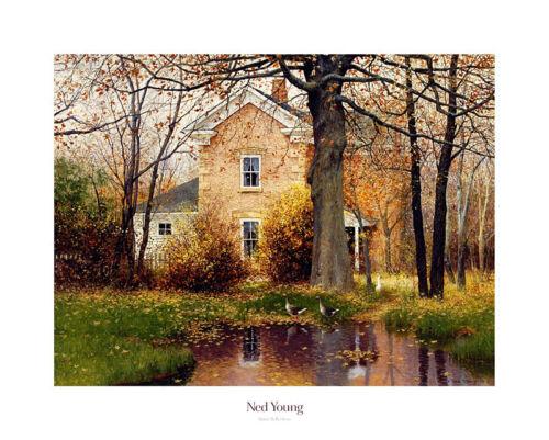 Ned Young Quiet Reflections Poster Kunstdruck Bild 61x76cm