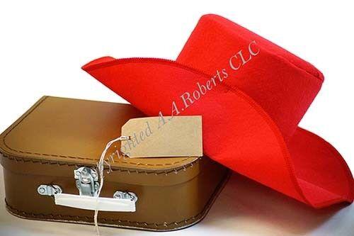 Film-World Book Day RAILWAY BEAR Red Hat-Label-Brown Suitcase-Fancy Dress Set