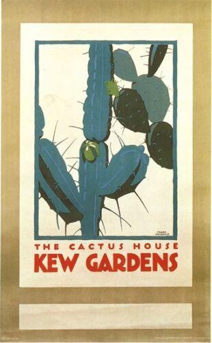 Vintage Kew Gardens Cactus House Poster A3 Print