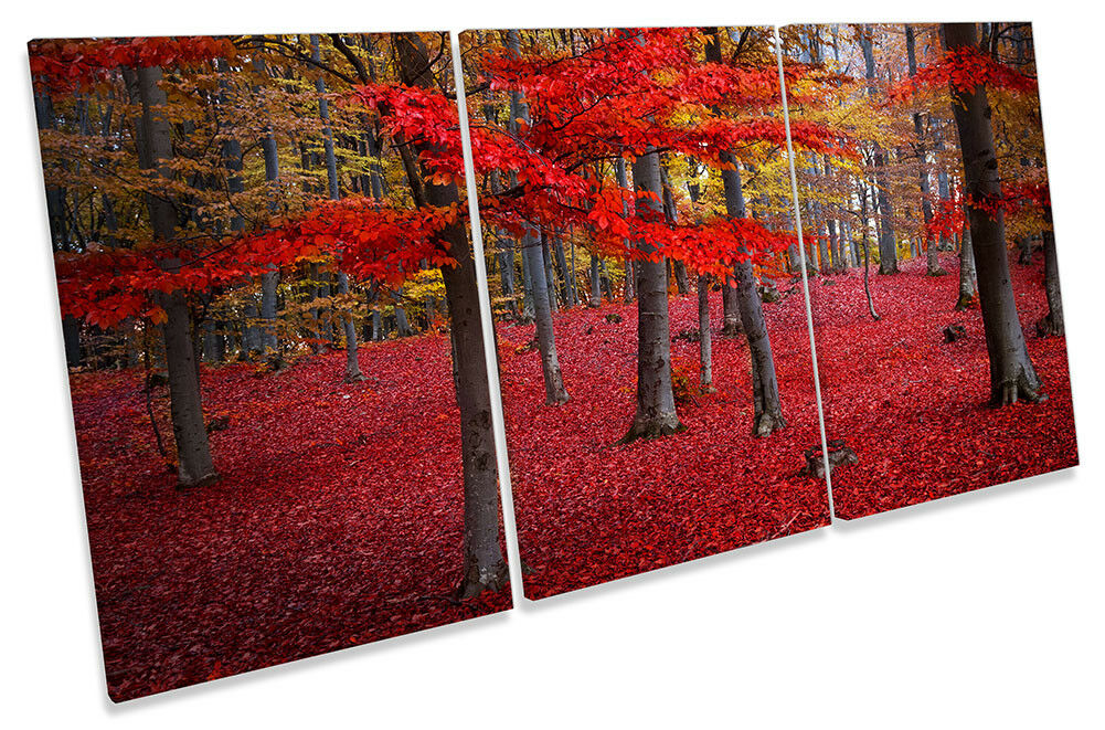 rot Landscape Forest Picture CANVAS WALL ART TREBLE Print