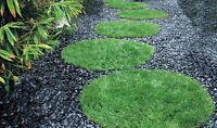 6 Foot Diameter Circle Premium Artificial Pet Turf Synthetic Lawn Grass Dog Run