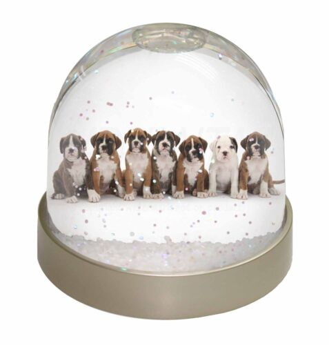 Boxer Dog Puppies Photo Snow Globe Waterball Stocking Filler Gift AD-B29GL