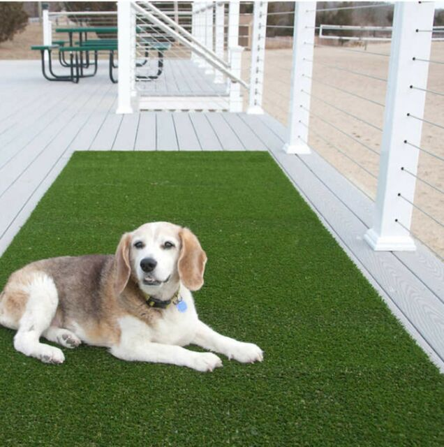 Tundra 7 Ft 6 In X 12 Ft Classic Artificial Turf For Sale Online Ebay