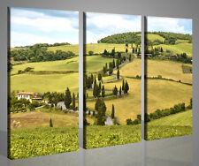 QUADRI MODERNI TOSCANA XXVII STAMPE SU TELA PICTURES LANDSCAPE TUSCANY ITALY