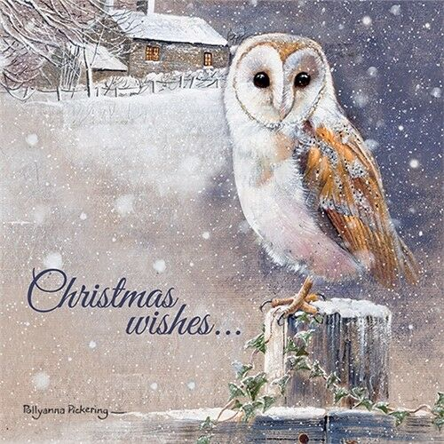 Christmas Wishes Charity Christmas Card Pack 10 Cards of 1 Design