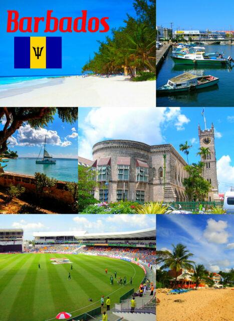 Barbades - Souvenir Nouveauté AIMANT de Réfrigérateur - Sites / Drapeau