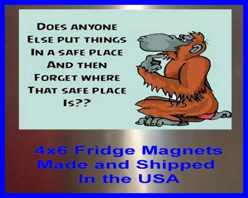 Safe Place 4X6 Fridge Magnet Man Cave Decor SIGN Photo Bar Garage Shop