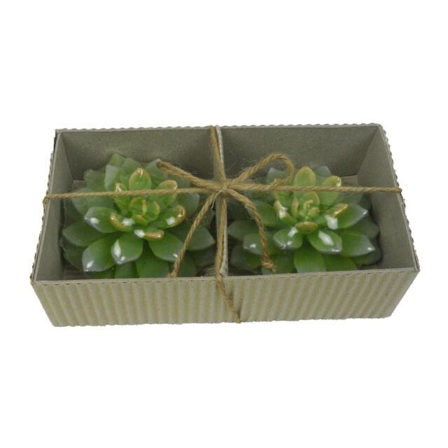 4 Set x 2 Pieces Scented Floating Candles Pine Tree Scent Nice Gift