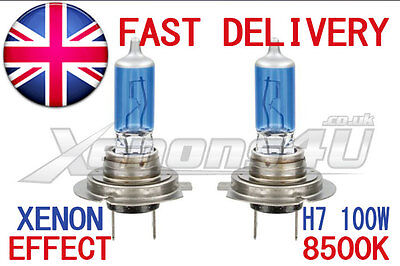2x H7 100W 8500K XENON LOOK HEADLIGHT BULBS FANTASTIC WHITE BLUE TINT LIGHT