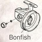 bonfish