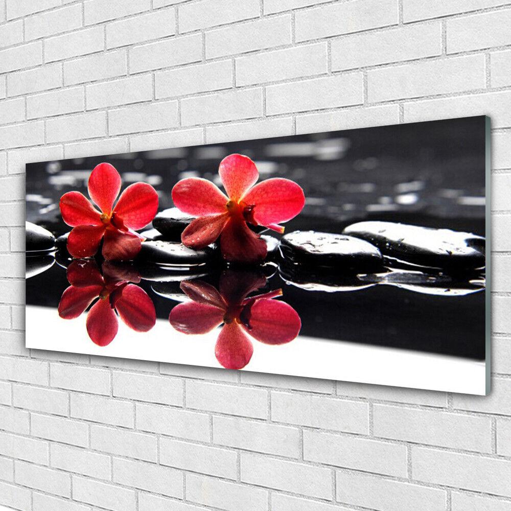 Impression sur verre Image tableaux 125x50 Floral Fleurs Pierres