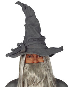Adult Deluxe Wizard Hat Fancy Dress Party Accessory Witch Craft Magic Lord Grey