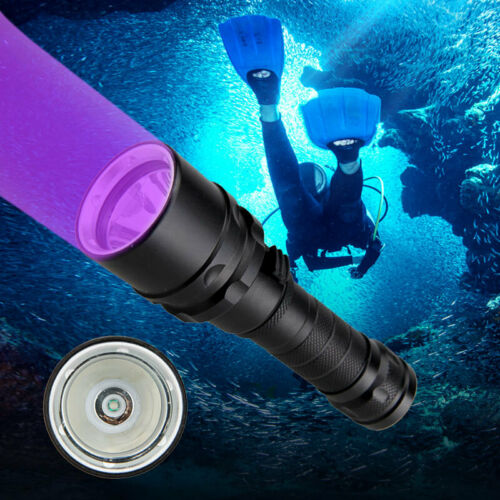 Details about  /Underwater 100M 365nm-395nm XPE UV Light LED Scuba Diving Flashlight Torch Lamp