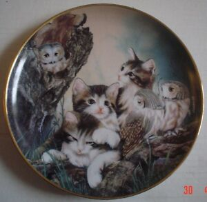 Franklin-Mint-Collectors-Plate-WHOO-ARE-YOU-Cat-Kitten-Owl