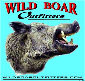 Hog-Hunt-Wild-Boar-Hog-Pig-in-North-East-TX-Lodging-included